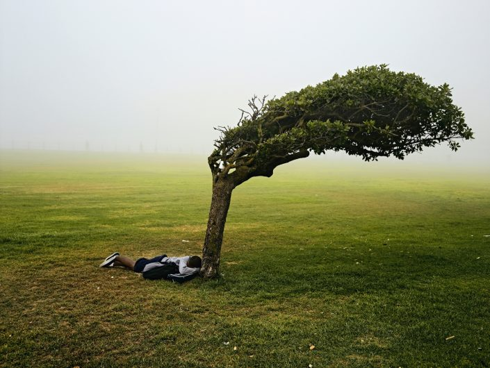 "Pieter Hugo, Green Point Common, Cape Town, 2013 C-Print Large: ca. 102 x 127 cm (image), edition of 5 + 2AP Medium: ca. 82 x 103 cm (image), edition of 9 + 2AP, from ""Kin"""