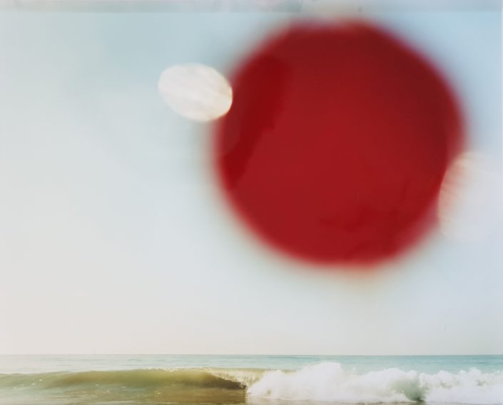 Warren Neidich, Louse Point #6, from Double Vision (1997-2000), photography, c-print, 50,7 x 60,7 cm